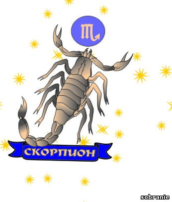 Рыбы гороскоп любовный завтра поражение победу Гороскоп